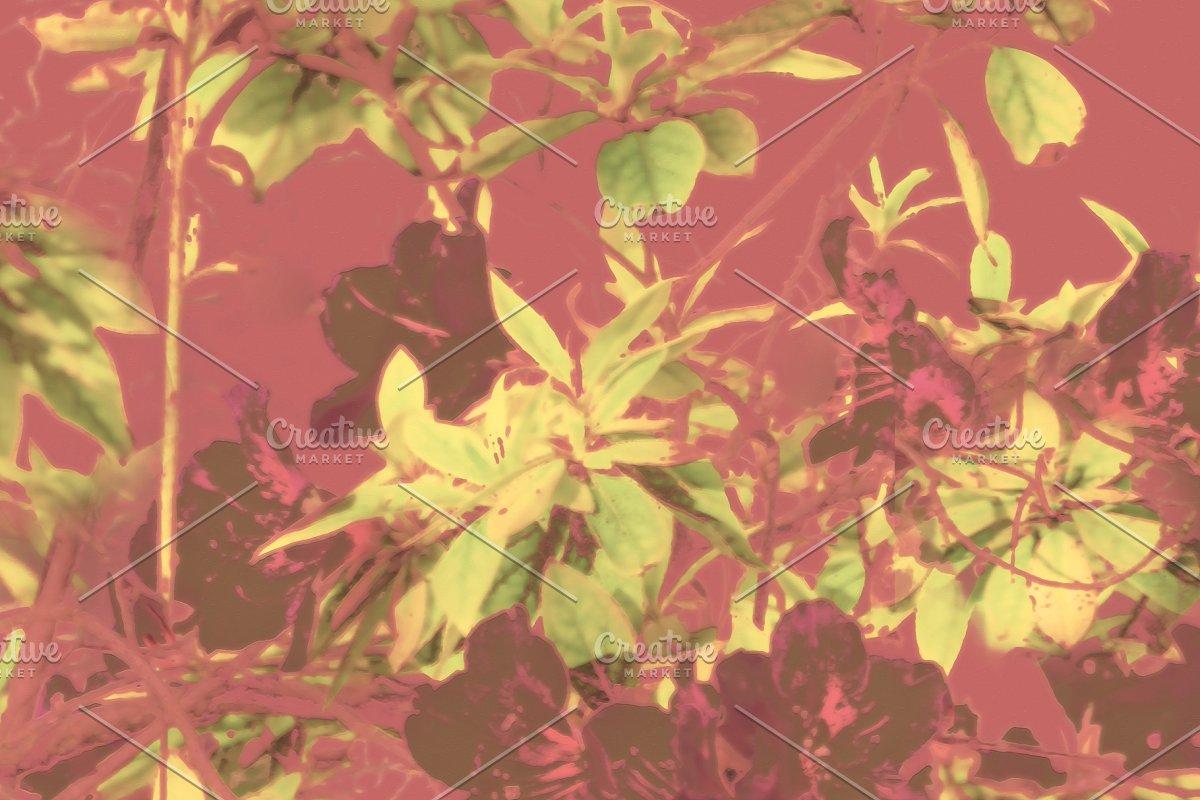 Tropical Vintage Floral Artwork
