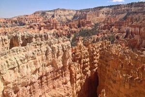 Canyon Captivation