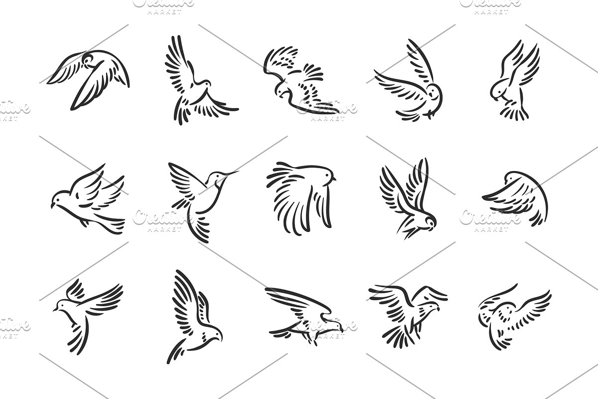 Flying birds icons illustration set