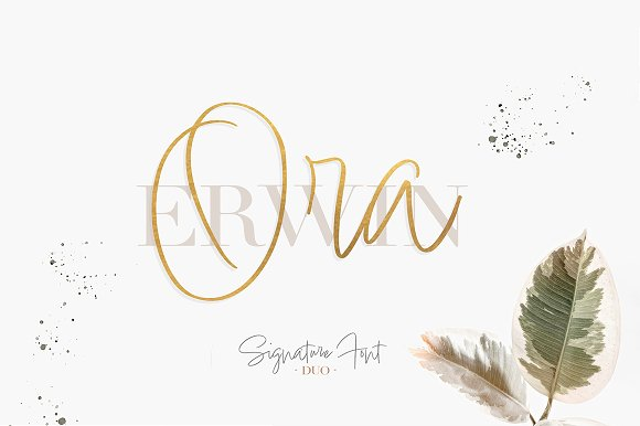 Ora Erwin : Signature Font Duo in Display Fonts - product preview 3