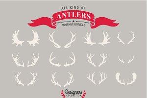 12 Deer antler