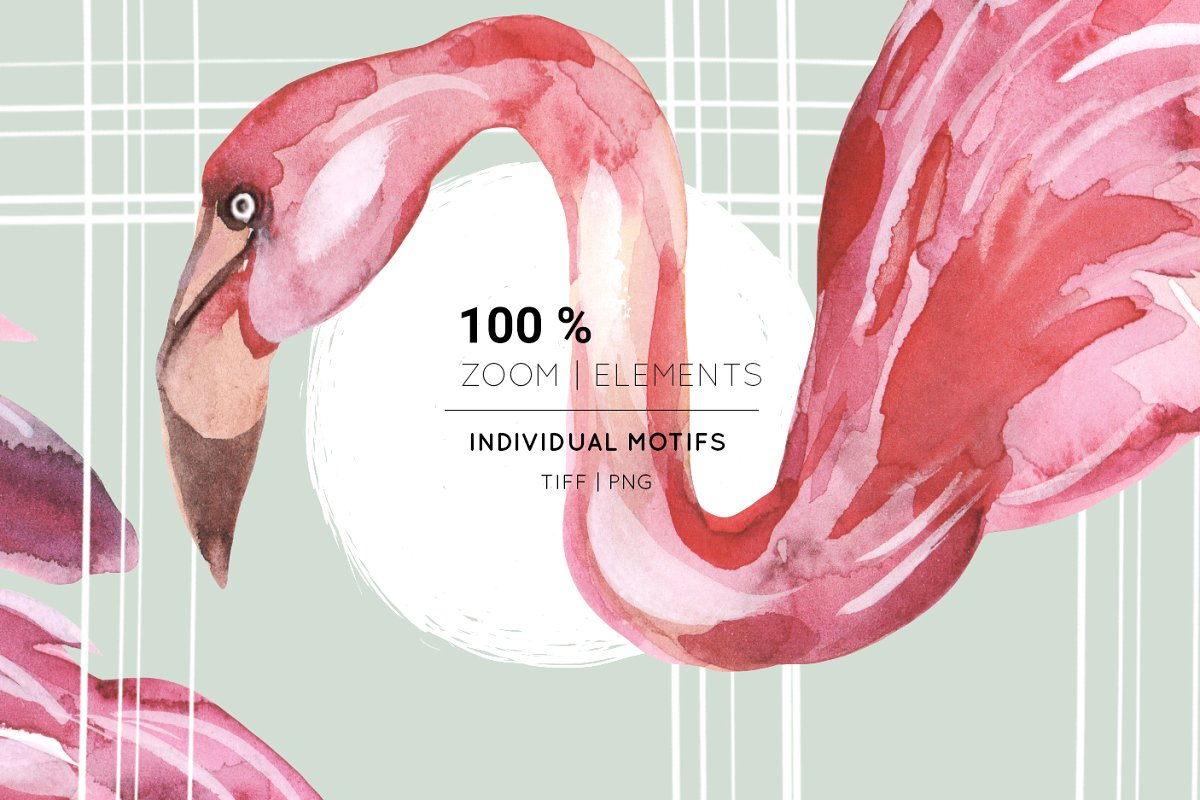 Flamingo, Patterns Set! in Patterns - product preview 11