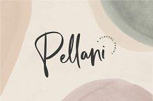 Pellani - A Playful Font