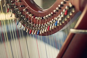 Part of harp, musical instrument