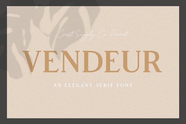 Vendeur - Elegant Serif Font