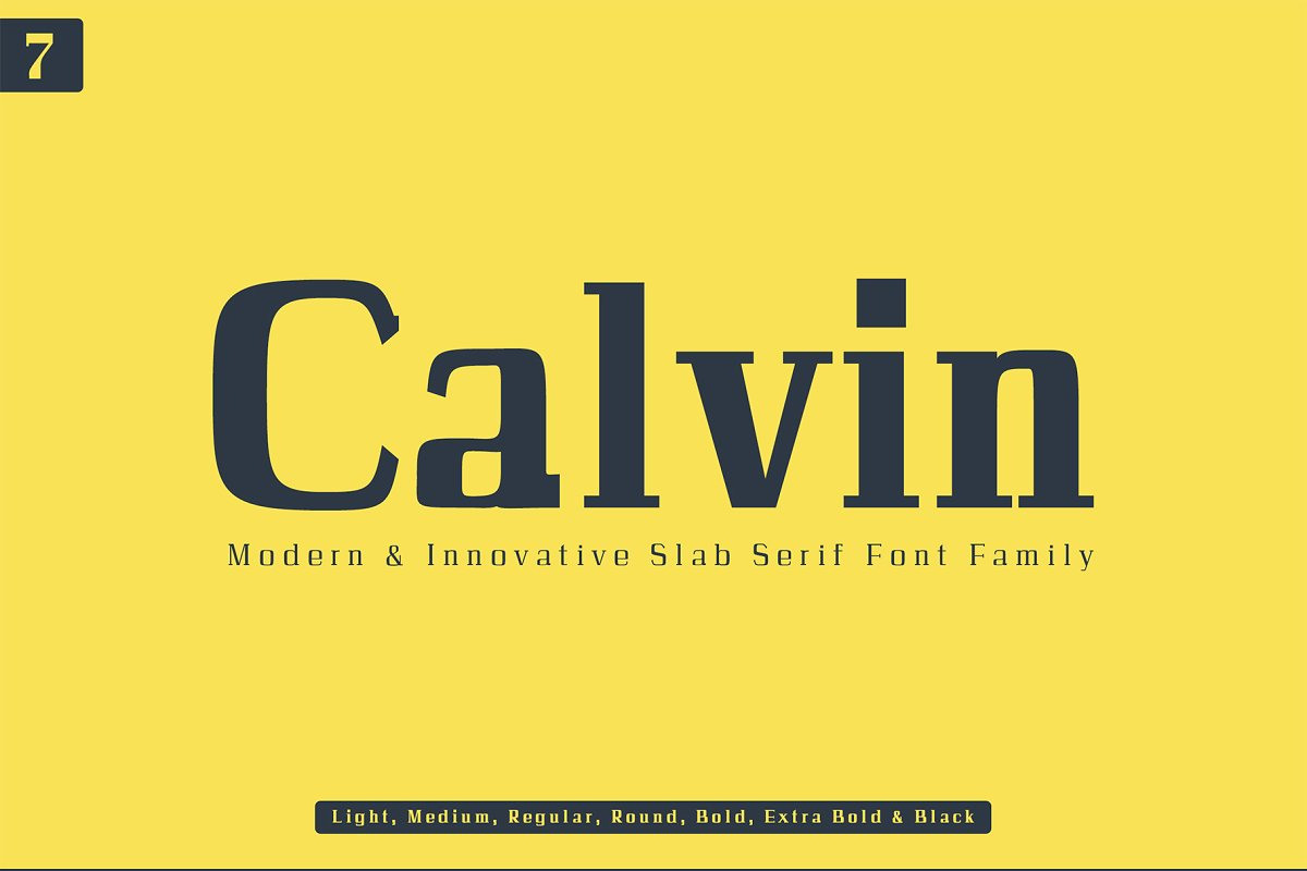Calvin Slab Serif Font Family