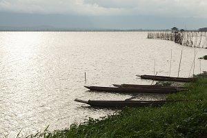 Paddle boats ashore