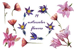 14 watercolor flower