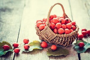 Hawthorn berries in basket
