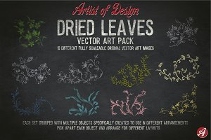 Vector Clip Art Dried Leaves Pack