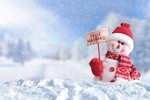 Snowman with placard Feliz Navidad