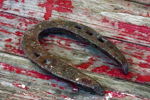 horseshoe on old wood