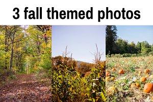 Fall Themed Photos