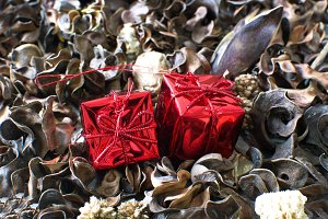 Gift boxes and autumn leaves