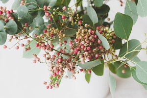 Eucalyptus and pink pepper bouquet