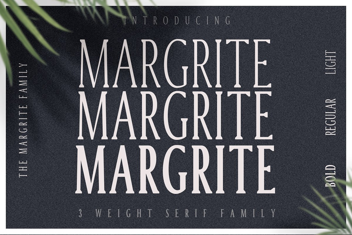 Margrite - Tall Serif Font Family in Serif Fonts - product preview 9