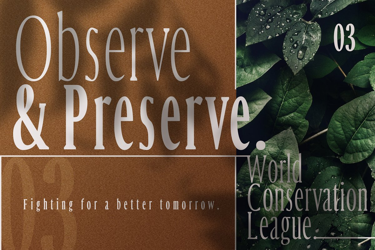 Margrite - Tall Serif Font Family in Serif Fonts - product preview 8