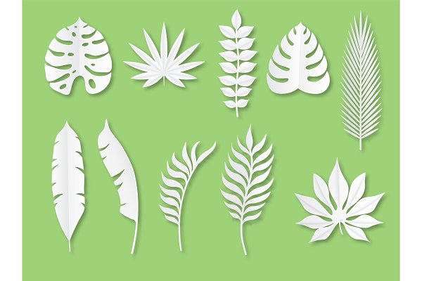 Paper Tropical Leaves Exotic Plants Pre Designed Vector Graphics Creative Market Tropical leaf palm print, showing various tropical plants together in one poster. paper tropical leaves exotic plants