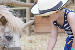 farm boy feeding pony