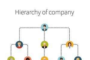 Hierarchy of company