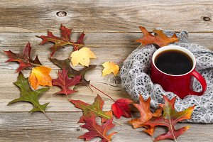 Hot Coffee for the Autumn Season