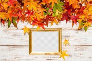 Autumn leaves and golden frame