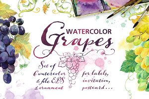 "Set Watercolor ""Grapes"""