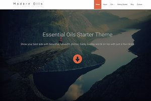 WordPress Starter Theme-Modern Oils