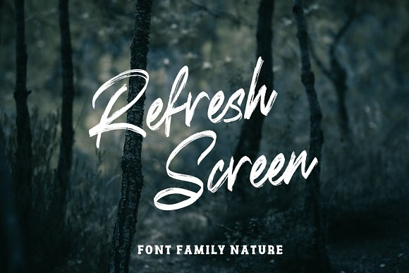 Refresh Screen Brush Script Font Duo in Display Fonts - product preview 6
