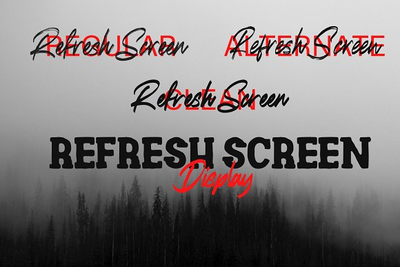 Refresh Screen Brush Script Font Duo in Display Fonts - product preview 9