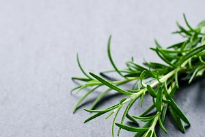 Rosemary twigs on black copy space