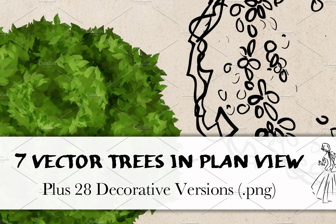 Trees In Plan View Illustrations Creative Market