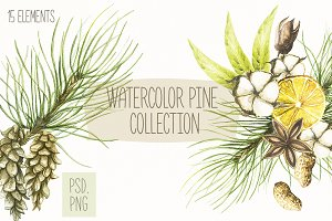 Watercolor pine collection