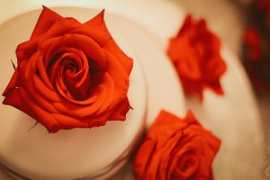 Rose on a Cake
