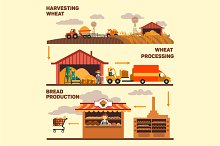 Production of bread, harvest