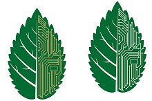 Green leaf with computer and motherb