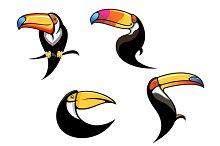 Funny toucan mascots and symbols