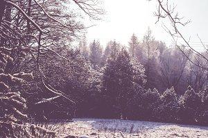 Wintertime outdoor