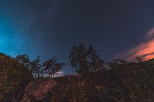 Bench in the forest under the stars