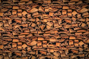 Dry Firewood in a Pile for Furnace