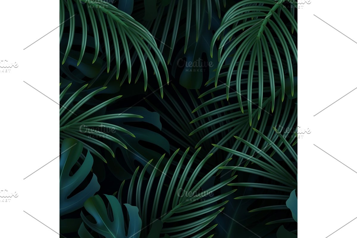 Palm background. Tropical leaf.