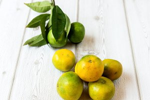 Ripe sweet lemon and tangerine with