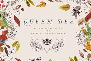 Watercolour Clip Art - Queen Bee