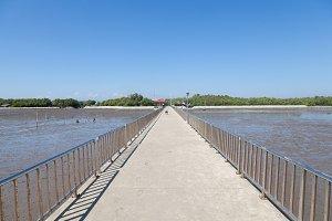 bridge between coast and the sea.
