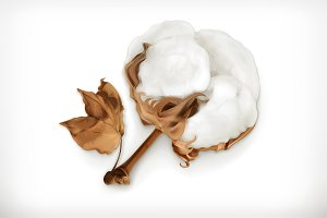 Cotton icon
