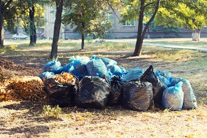Garbage bags with leaves