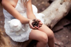 Little girl's hands holding pinecone