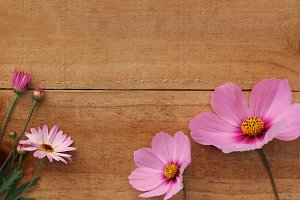 Flower border - pink flowers on wood