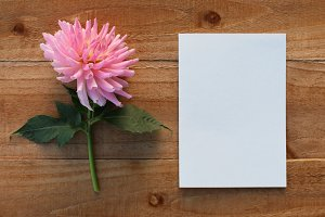 Pink flower and blank paper on wood