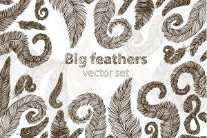 Big feather vector set